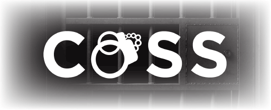 VCS COSS product solutions